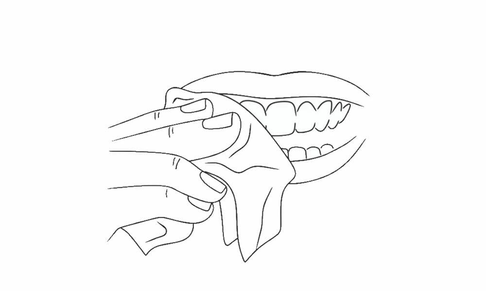 tandblekningspenna steg 1